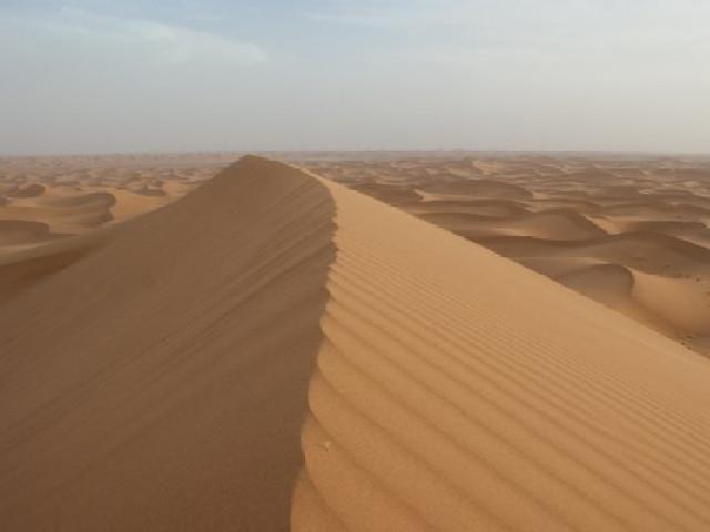 Woestijnlied